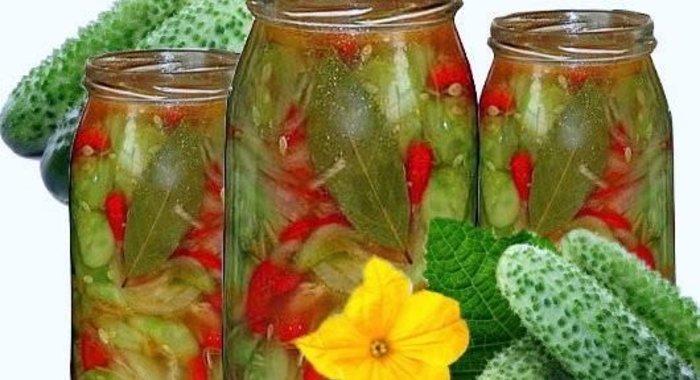 Огурцы на зиму рецепты с фото болгарские