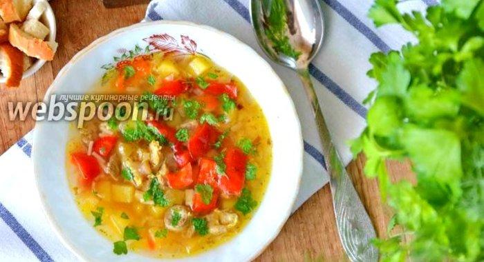 Суп с куриными желудочками рецепт пошагово