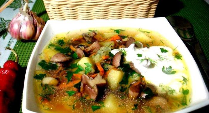Суп грибнойы с фото простые и вкусныеы фото